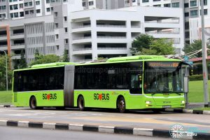 Bus 804 - SBS Transit MAN A24 / Lion's City G (SMB8003A)