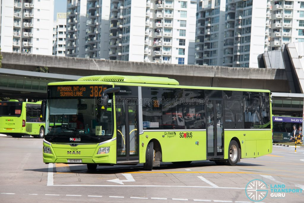 Bus 382G: Go-Ahead MAN Lion's City A22 (SG1841X)