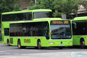 Bus 262: SBS Transit Mercedes-Benz Citaro (SG1099Y)