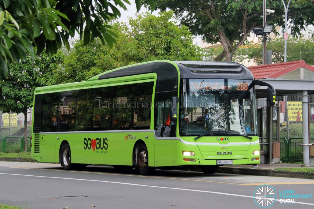 Bus 268: SBS Transit MAN Lion's City A22 (SMB3052R)