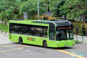Bus 800: SBS Transit MAN A22 (SMB3077U)