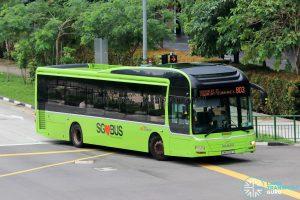 Bus 803: SBS Transit MAN A22 (SMB3132T)