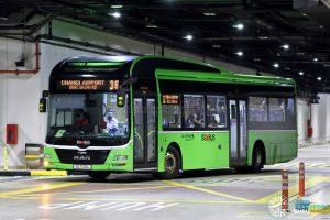 Bus 36 - Go-Ahead Singapore MAN A22 (SG1720L)