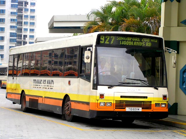 Bus 927: Trans-Island DAF SB220 (TIB691M)