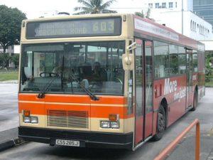 Bus 603: City Shuttle Service DAF SB220 (CSS285J)