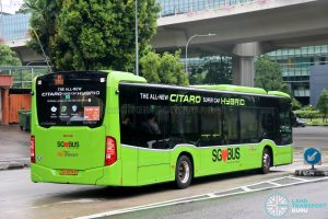 SBS Transit Mercedes-Benz Citaro hybrid (SG4004B) - Rear
