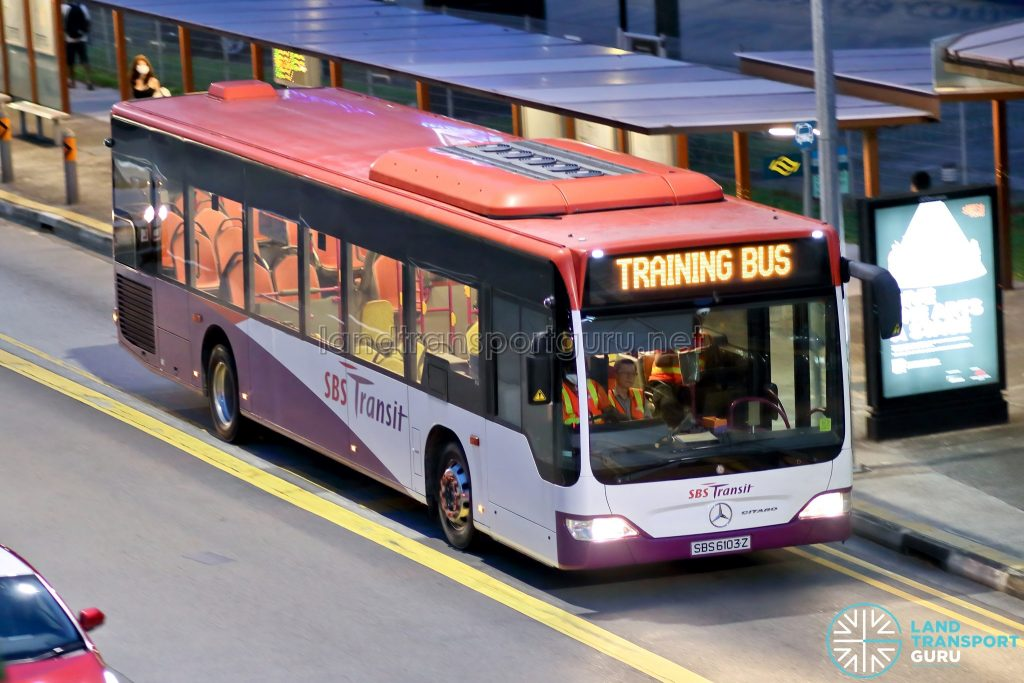 Training Bus - SBS Transit Mercedes-Benz Citaro (SBS6103Z)