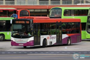 Bus 160 - SBS Transit Scania K230UB Euro IV (SBS8438U)