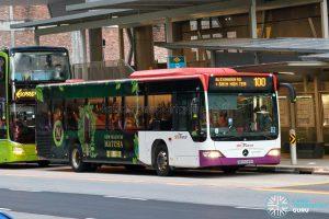 Bus 100 - SBS Transit Mercedes-Benz Citaro (SBS6048A)
