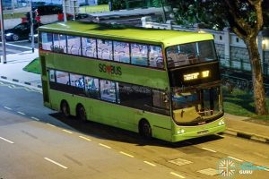 Bus 197 - SBS Transit Volvo B9TL CDGE (SBS7399E)