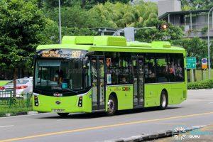 Bus 807 - SBS Transit BYD K9 (Gemilang) (SG3054M)