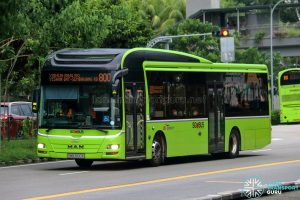 Bus 800 - SBS Transit MAN A22 (SMB3100K)