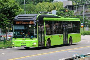 Bus 800 - SBS Transit MAN A22 (SMB3142P)