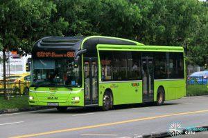 Bus 800 - SBS Transit MAN A22 (SMB3166X)