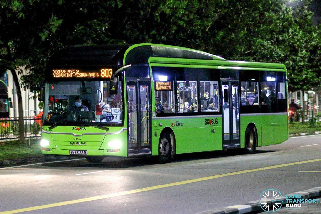 Bus 803 - SBS Transit MAN A22 (SMB3168R)
