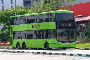 Bus 181 - SBS Transit Volvo B9TL CDGE (SBS7396M)
